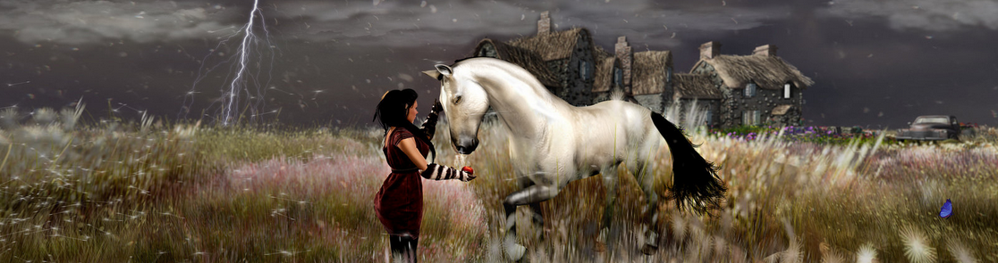 Second Life Photo, Cinnamon before the storm by Zander Reeves from Flickr